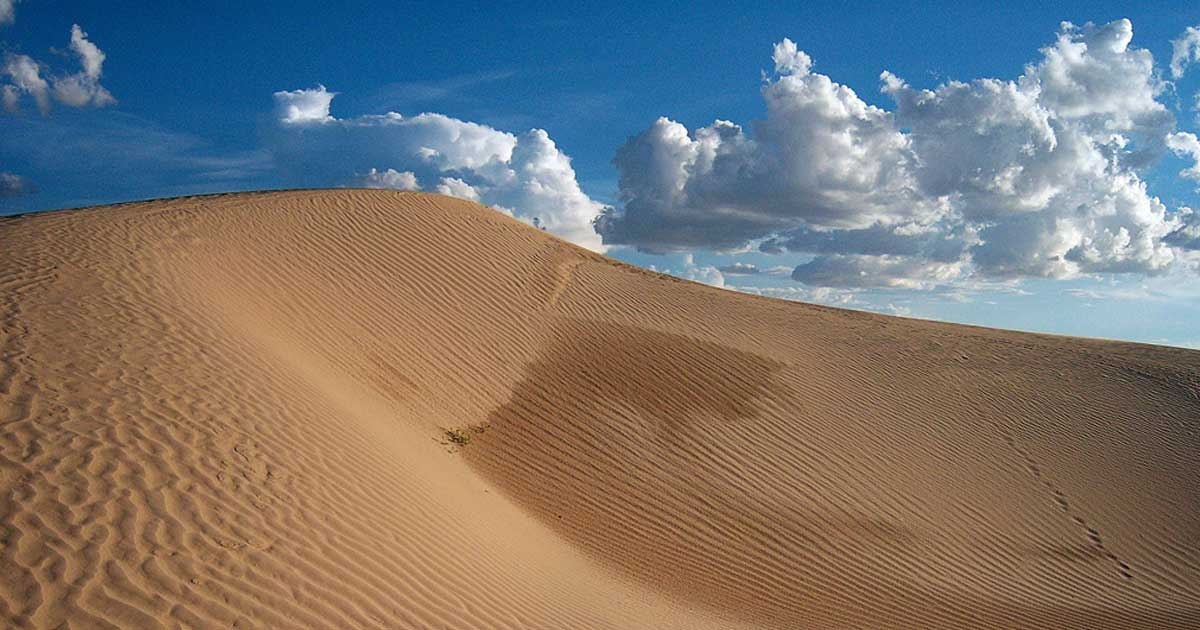 10 reasons to travel to the Samalayuca Dunes in Chihuahua
