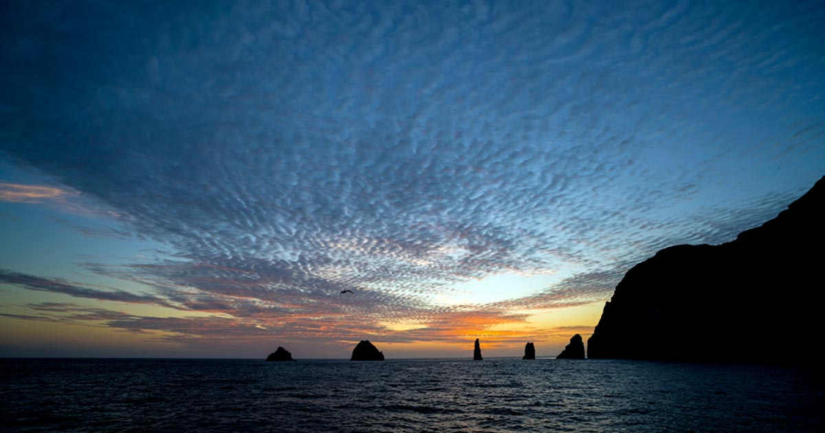 What you need to know about Malpelo Island, natural gem of Colombia