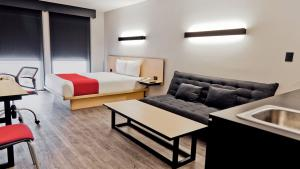Suite, 1 queen size bedand 1 sofa bed
