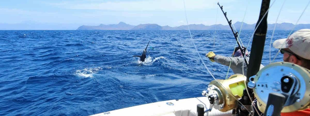 How to make the best out of fishing season in la paz for California fishing season 2017