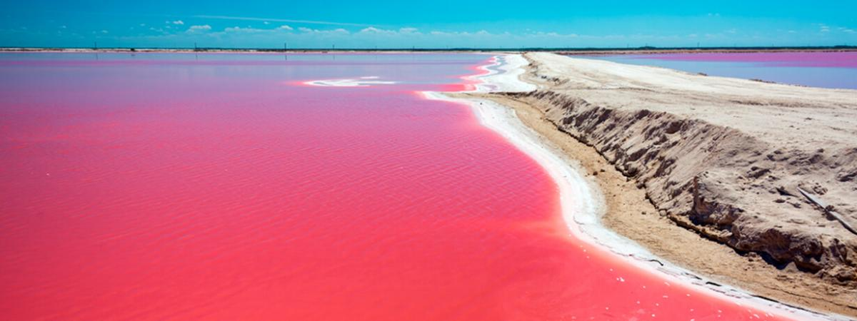 The Pink Lake At Las Coloradas In Yucatan Mexico Like Swimming A Dream City Express Hotels